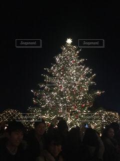 冬,夜景,屋外,イルミネーション,人,クリスマス,クリスマスツリー,複数人
