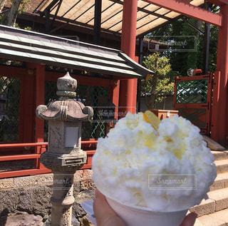 かき氷,カキ氷,おいしいかき氷,かき氷と神社,広島レモンかき氷