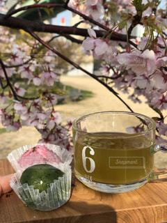 桜,桜餅,緑茶,草餅,お出かけ,煎茶