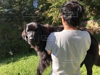 犬,夏,動物,庭,屋外,草,樹木,洋服,人物,Tシャツ,シャツ,抱っこ,休日,真夏,夏日,夏服,40代,半袖