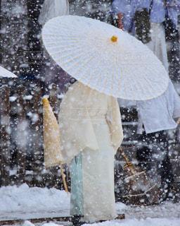 男性,冬,雪,屋外,京都,後ろ姿,人物,背中,後姿,下鴨神社,和装