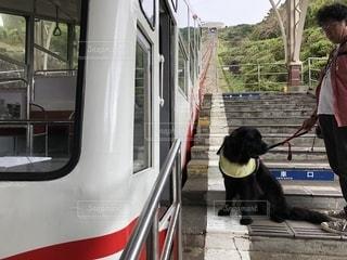 発車待ち〜の写真・画像素材[2147237]