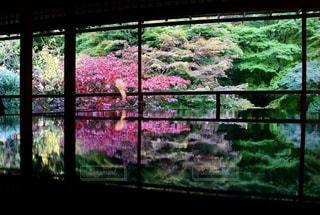 窓の外を見る眺めの写真・画像素材[2513150]