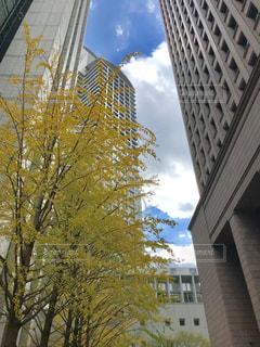 建物の側に時計と大きな背の高い塔 - No.869108