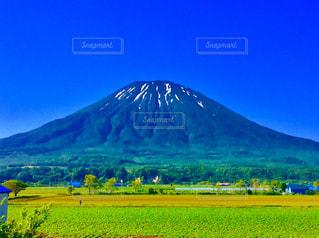 羊蹄山の写真・画像素材[884940]