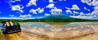 田植えと逆さ羊蹄山の写真・画像素材[1314513]