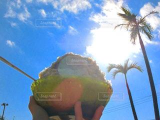 空,太陽,青空,光,ヤシの木,かき氷