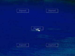 船の写真・画像素材[3592414]