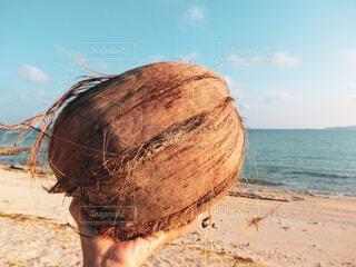自然,空,屋外,砂,ビーチ,青空,砂浜,手,海岸,沖縄,指,手持ち,人物,人,浜辺,ポートレート,久米島,離島,ライフスタイル,素材,ヤシの実,手元,フォトジェニック,インスタ映え,素材写真