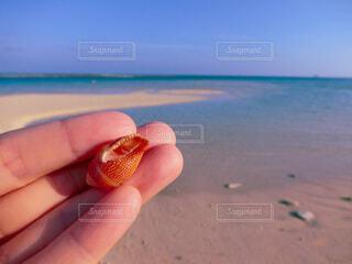 空,屋外,砂,ビーチ,青空,砂浜,手,貝殻,海岸,沖縄,指,手持ち,人物,人,ポートレート,久米島,離島,ライフスタイル,素材,手元,フォトジェニック,インスタ映え,素材写真