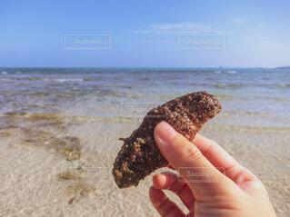 自然,空,屋外,砂,ビーチ,青空,砂浜,手,海岸,沖縄,指,手持ち,人物,人,浜辺,ポートレート,久米島,離島,ライフスタイル,素材,手元,フォトジェニック,なまこ,ナマコ,インスタ映え,素材写真