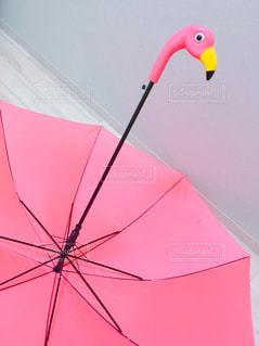 フラミンゴの傘の写真・画像素材[794369]
