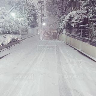 雪に覆われた道路の写真・画像素材[2813835]