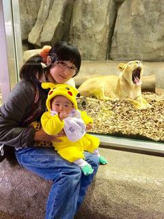 子ども,自然,動物,黄色,子供,人物,あくび,人,赤ちゃん,幼児,動物園,生き物,男の子,ライオン,哺乳類,ママと子供