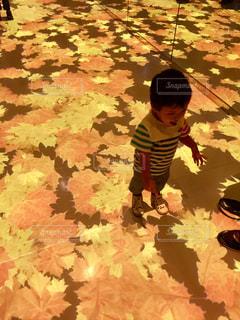 傘を保持している小さな男の子 - No.728453