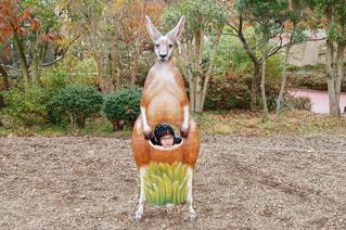 馬はダートで立っています。の写真・画像素材[762336]