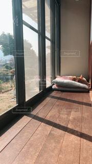 犬,マイホーム,縁側,ペット,日向ぼっこ