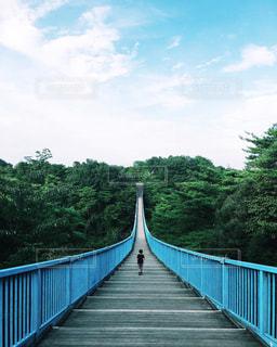 公園の橋の写真・画像素材[2148155]