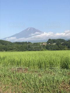 富士山の写真・画像素材[1401144]