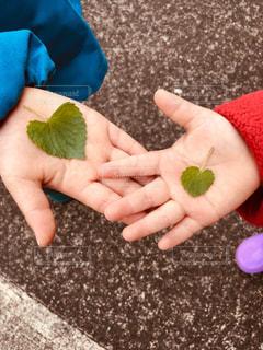 葉っぱ,散歩,手,葉,子供,ハート,みつけた