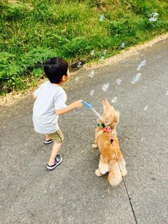 子どもの写真・画像素材[2035056]