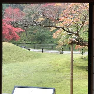 公園の景色の写真・画像素材[875043]