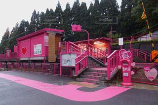 ピンクの写真・画像素材[1452873]