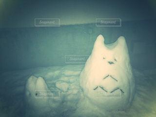 雪の写真・画像素材[1656939]