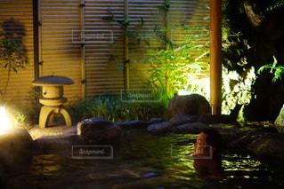 箱根温泉旅館にての写真・画像素材[758310]
