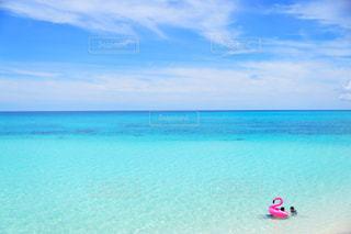 青とピンクの写真・画像素材[917797]