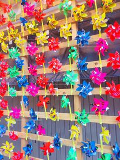 色とりどりの花のグループの写真・画像素材[788649]