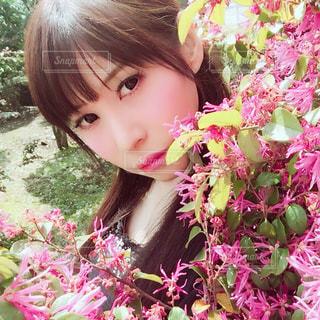 ピンクの花の小さな女の子の写真・画像素材[919152]