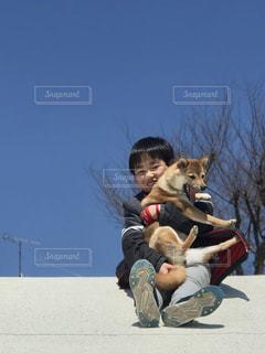 犬の写真・画像素材[2006208]