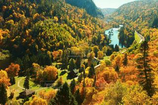 背景の山と木の写真・画像素材[772699]