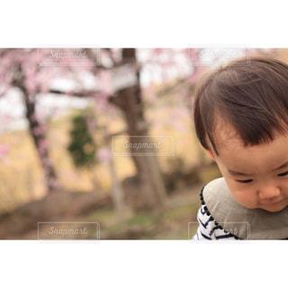 子供の写真・画像素材[640282]