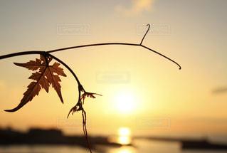 海,空,夕日,夕暮れ,光,リーフ,下灘,情景,フォトジェニック