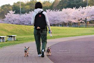 男と女の道を歩いて - No.1115702