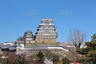 大きな白い建物の姫路城を背景にの写真・画像素材[1312824]