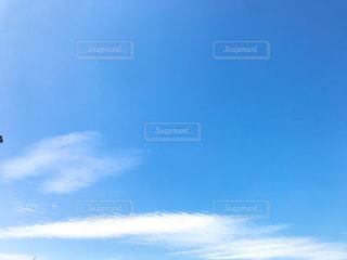 空を飛んでいる人の写真・画像素材[1466004]