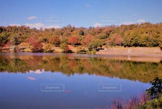 木々 に囲まれた水の体の写真・画像素材[1600434]