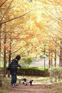 木の隣に立っている男の写真・画像素材[1600447]