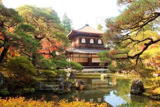 バック グラウンドで銀閣寺を背景に木の家の写真・画像素材[1672775]