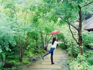 傘,屋外,水,樹木,人物,人,長靴,雫,レインブーツ,草木,雨の日,赤い傘,折り畳み傘