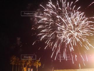夏,南国,花火,祭り,ヤシの木,宮崎,青島,国際ビールまつり