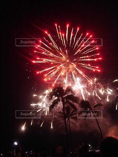 南国,花火,ヤシの木,ハワイ,Hawaii,ヒルトン