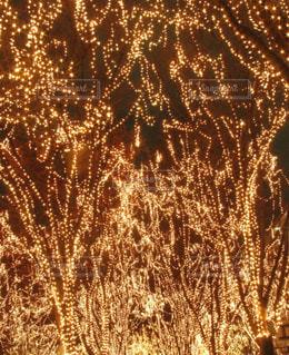空に花火のグループの写真・画像素材[771996]