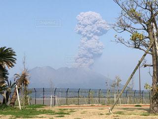 連続噴火の桜島の写真・画像素材[1114284]