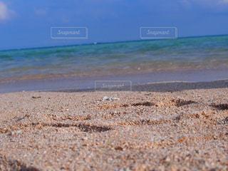 砂浜と海 - No.1118319