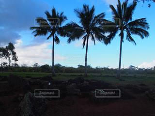 ハワイの空の写真・画像素材[1126247]