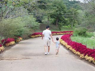公園,親子,後ろ姿,後姿,少年,男の子